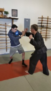 First attempts at sidestepping punches